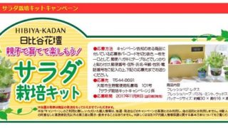 【クローズド・はがき懸賞】フルタ製菓 日比谷花壇サラダ栽培キット・たち吉陶板鍋が当たる