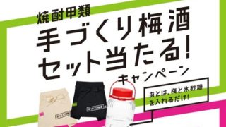 【大量当選】手づくり梅酒セットが1,000名に当たる!焼酎+瓶+エプロン