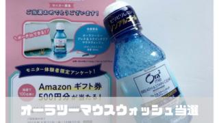 【Twitter当選報告】オーラツーマウスマッシュモニター