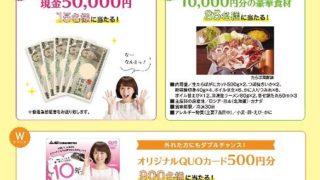 現金5万円が15名・豪華食材が85名に当たる!カセットこんろ安心・安全キャンペーン