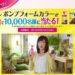 【大量当選】1万名にプレゼント ビゲン ポンプフォームカラー(白髪染めヘアカラー)