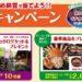 【はがき懸賞】おかめ納豆 おいしさイチオシ納豆キャンペーン オープン&クローズド
