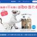 抽選でaibo(アイボ)が11名様に当たる!懸賞キャンペーン|日本コカ・コーラ(ジョージア)