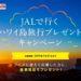 【旅行懸賞】JALで行くハワイ島旅行プレゼントキャンペーン
